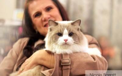 Winner of KZNCC Top Cat 2015